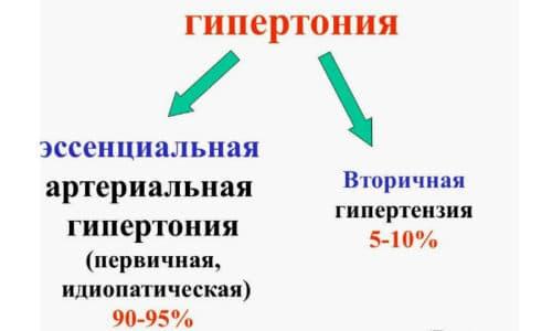 Различают первичную и вторичную гипертонию